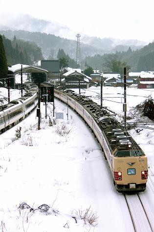 2010.1.10 北陸本線 近江塩津-新疋田 雷鳥1.JPG