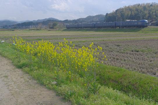 2017.4.15 京都丹後鉄道 京丹後大宮-峰山 丹後の海1.JPG