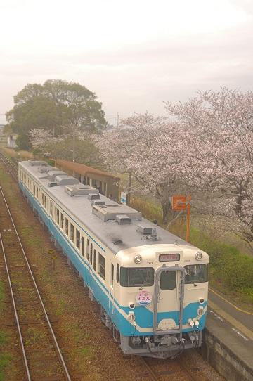 2017.4.8  徳島線 牛島1.JPG