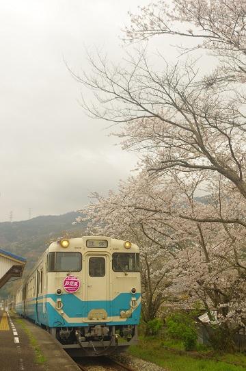 2017.4.8 徳島線 小島1.JPG