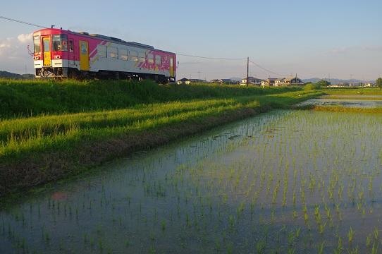 2017.6.15 北条鉄道 粟生-網引1.JPG