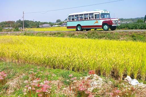 2014.9.29 奈良交通 五新線専用道 奈良交通ボンネットバス1.JPG