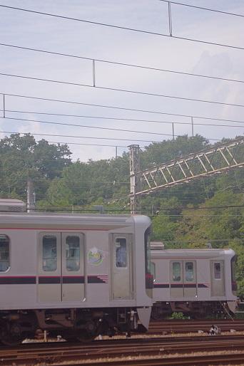 2015.10.4 神戸電鉄鈴蘭台車庫 6000系1.JPG