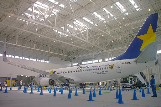 2016.5.21 神戸空港スカイマーク格納庫 タイガースジェット展示2.JPG