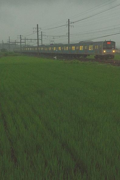 2017.7.30 阪和線 新家-長滝 205系1.JPG