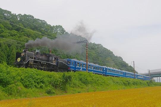 2018.5.27 北陸本線 河毛-高月 C56 160ラストラン北びわこ号1.JPG