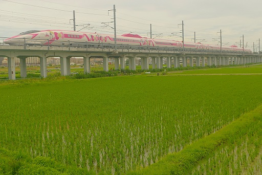 2018.7.3 山陽新幹線 西明石-姫路 500系キティ新幹線1.JPG