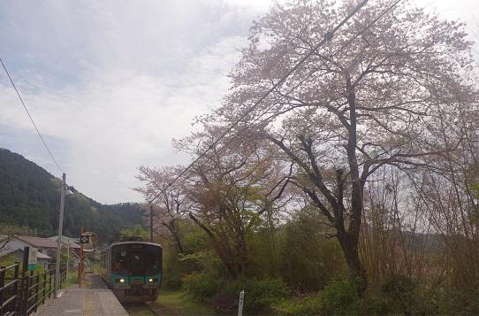 2019.4.17 加古川線 本黒田 125系1.JPG